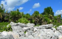 Caribbean beach at the Riviera Maya, Cancun, Mexico Stock Image