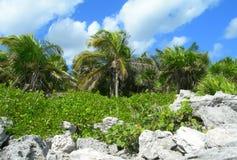 Caribbean beach at the Riviera Maya, Cancun, Mexico Royalty Free Stock Photography