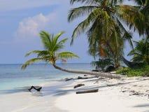 Caribbean Beach San Blas Royalty Free Stock Photography