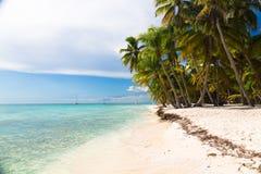 Caribbean beach in Saona island, Dominican Republic Royalty Free Stock Image