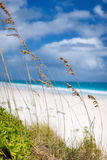 Caribbean beach and sea Stock Images