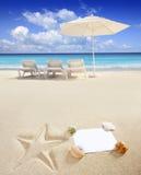 Caribbean beach sea with starfish shells stock photography