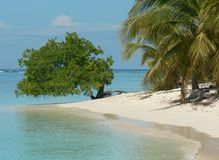 Caribbean beach on a sunny summer day. Palm tree white sand beach on venezuelan island, surrounded by corral reefs Royalty Free Stock Photography