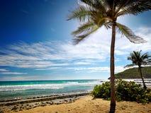 Caribbean beach and tropical sea in Haiti Stock Images