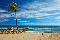Caribbean beach and tropical sea in Haiti stock image