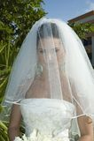 Caribbean Beach Wedding - Bride with Veil stock photos