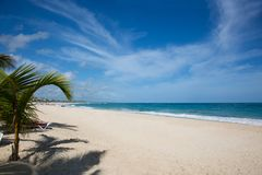 Caribbean beach with white sand, the ocean, palm trees and some clouds Royalty Free Stock Photos