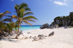 Caribbean blue Royalty Free Stock Image