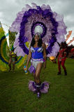 Caribbean carnival Stock Images