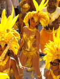 Caribbean Carnivale 5 Royalty Free Stock Photos