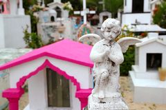 Caribbean cemetery catholic angel saints figures Stock Images