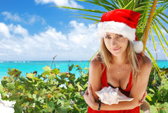 Caribbean christmas Stock Photos