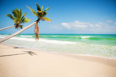 Caribbean coast Stock Photos