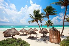 Caribbean coast. Beautiful Caribbean coast in Tulum Mexico Stock Photos