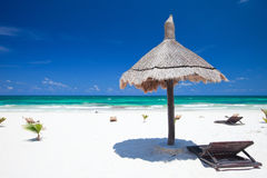 Caribbean coast Royalty Free Stock Image