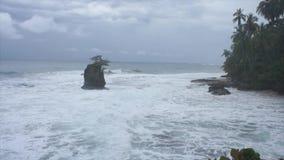 Caribbean coast in costa rica stock video footage