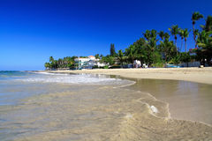 Caribbean Coastline , Cabarete Stock Photos