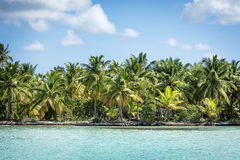 Caribbean coastline Royalty Free Stock Photography