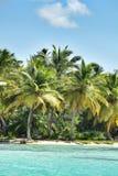 Caribbean coastline Stock Photography