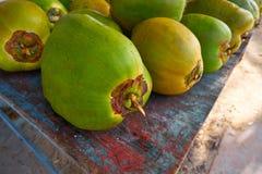 Caribbean coconut fruits in Riviera Maya. Caribbean coconut fruits in Mayan Riviera of Mexico stock images