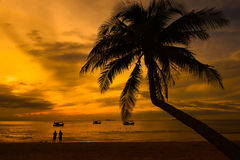 Caribbean coconut palm trees in tuquoise sea Royalty Free Stock Photography