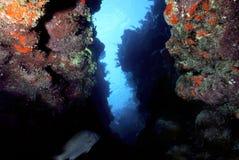 Caribbean crevice Royalty Free Stock Image