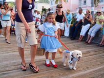 Caribbean Dog Parade. The annual Krewe de Barkus Parade attracts many entries with wonderful costumes. It is held in Christiansted, St. Croix, US Virgin Islands Royalty Free Stock Photos