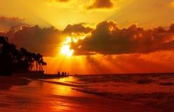 Caribbean Dream beach. Stock Images