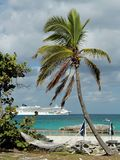 Caribbean Feeling. Palm beach with a cruiseship in the background Stock Images