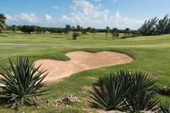 Caribbean golf fields in tropics Stock Image