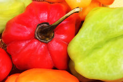 Caribbean habanero hot multicolor chili pepper 2 Royalty Free Stock Photo