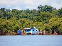 Caribbean hut in the mangrove Stock Images