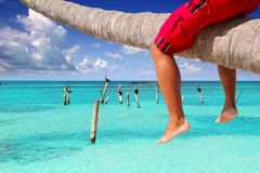Caribbean inclined palm tree beach tourist legs Stock Images
