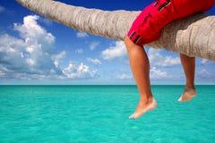 Caribbean inclined palm tree beach tourist legs Royalty Free Stock Photos