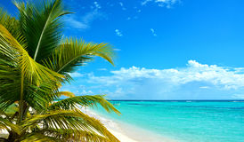 Caribbean island Royalty Free Stock Photography