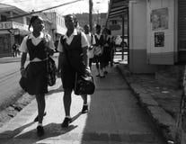 Caribbean island life Stock Photography