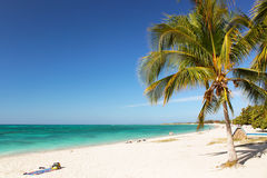 Caribbean Island Paradise. Palm trees hanging over a sandy white beach with stunning turquoise waters Stock Image
