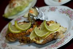 Caribbean Lobster Tail Royalty Free Stock Images