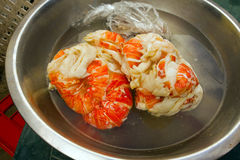 Caribbean lobster tails thawing in cold water. Frozen langouste in a bowl at mac's pizzeria on bequia Stock Image