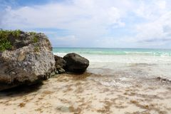 Caribbean ocean and rocks with seaweed Royalty Free Stock Photo