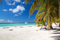 Caribbean paradise Stock Images