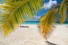 Caribbean paradise Royalty Free Stock Image
