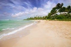 Caribbean paradise Stock Photos