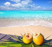 Caribbean paradise beach coconuts cocktail. Palm trees Royalty Free Stock Photography