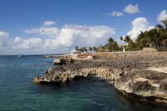 Caribbean  reef Stock Image