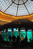 Caribbean Reef. Visitors view the marine life in a recreated Carribean Reef at the Shedd Aquarium in Chicago Stock Photo