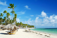 Caribbean resort beach with umbrellas and chairs royalty free stock photo