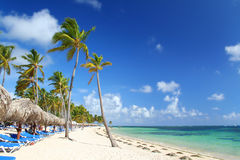 Caribbean Resort Beach With Umbrellas And Chairs Stock Image