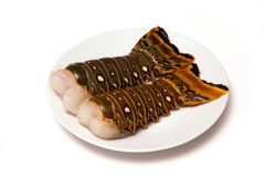 Caribbean rock lobster tails on a white background. Raw Caribbean ( Bahamas ) rock lobster (Panuliirus argus) or spiny lobster tails isolated on a white studio Stock Images