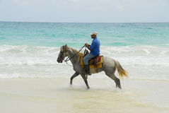 caribbean rycerz s Obrazy Royalty Free